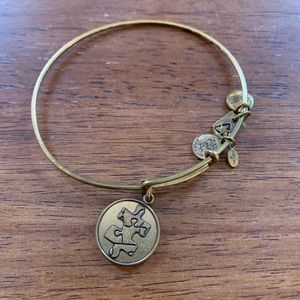 Alex and Ani Bangle Autism Awareness